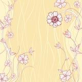Flor abstracta de la margarita Imágenes de archivo libres de regalías