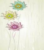 Flor abstracta del vector Fotografía de archivo libre de regalías