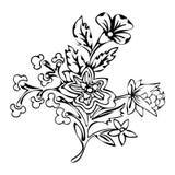 Flor abstracta, flor de la fantasía, imágenes que colorean, bosquejo monocromático, plantas del garabato, vector blanco y negro Fotografía de archivo