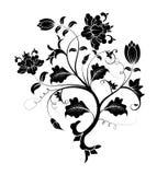 Flor abstrata Fotografia de Stock