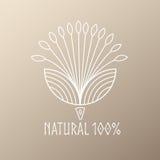 Flor abstrata do logotipo ilustração royalty free