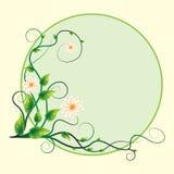 Flor abstrata do redemoinho do fundo da etiqueta Imagem de Stock Royalty Free