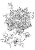 Flor abstrata do vetor ilustração stock