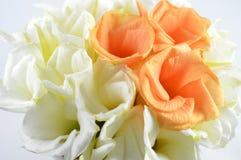 Flor afortunada de la nuez, Tailandia fotos de archivo libres de regalías