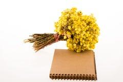 Flor al lado de un cuaderno Fotos de archivo