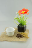 Flor alaranjada em um vaso com o copo de café no isolado de matéria têxtil do gunny Foto de Stock