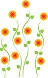 Flor alta amarela brilhante da margarida Fotografia de Stock Royalty Free