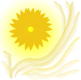Flor amarela abstrata no fundo branco Fotografia de Stock Royalty Free
