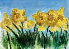 Flor amarela da aguarela Ilustração Stock