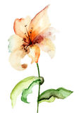 Flor amarela do lírio Fotografia de Stock Royalty Free