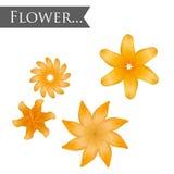 Flor amarela isolada de Lilia Fotos de Stock Royalty Free