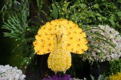 Flor amarilla del pavo real hecha Foto de archivo