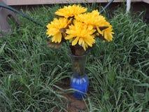 Flor amarilla en florero foto de archivo