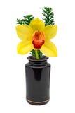 Flor amarilla (orquídea) en florero Imagenes de archivo