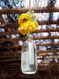 Flor amarilla plástica en botella de la hierba Imagen de archivo libre de regalías