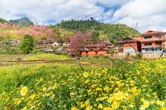 Flor amarilla y flor de cerezo rosada con una casa anaranjada Foto de archivo