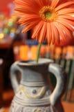 Flor anaranjada del gerbera en un florero azul fotografía de archivo