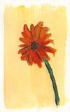 Flor anaranjada en fondo amarillo Imágenes de archivo libres de regalías