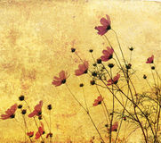 Flor antiquado ilustração stock