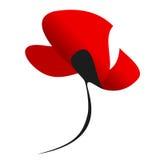 Flor apasionada roja brillante de la amapola de la tarjeta del día de San Valentín aislada en el fondo blanco Símbolo de la pasió Foto de archivo libre de regalías