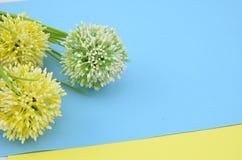Flor artificial con el fondo azul y amarillo Imagen de archivo libre de regalías