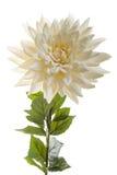 Flor artificial de la crema del hrysanthemum del ¡de Ð Fotos de archivo
