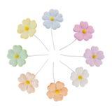 Flor artificial en colores pastel colorida con el polen amarillo, o aislado Foto de archivo