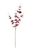 Flor artificial hermosa Imágenes de archivo libres de regalías