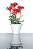 Flor artificial no vaso Fotografia de Stock Royalty Free