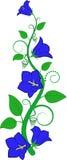 Flor azul Fotografía de archivo libre de regalías