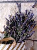 Flor azul bonita da alfazema imagens de stock royalty free