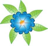 Flor azul con las hojas verdes Fotografía de archivo libre de regalías