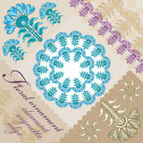 Flor azul del maíz Imagen de archivo libre de regalías