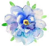 Flor azul Ejemplo floral de la acuarela Elemento decorativo floral Fotografía de archivo libre de regalías