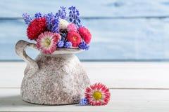 Flor azul y roja de la margarita en florero Fotografía de archivo libre de regalías