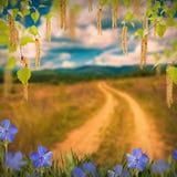 Flor background_52 Imagenes de archivo