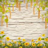 Flor background_66 Imagen de archivo libre de regalías