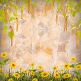 Flor background_65 Fotos de archivo