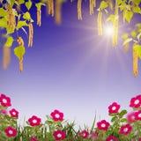 Flor background_79 Fotos de archivo libres de regalías
