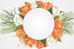 Flor Background3 Foto de Stock