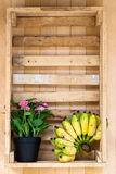 Flor & banana Imagens de Stock Royalty Free