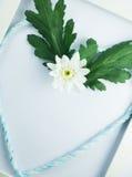 Flor blanca con el corazón adentro con el marco Foto de archivo