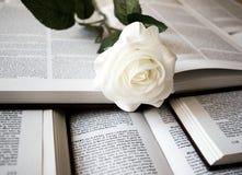 Flor blanca con un libro fotos de archivo libres de regalías