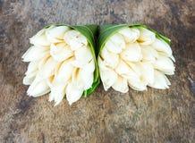 Flor blanca del champaka Imagen de archivo libre de regalías