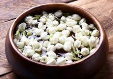 Flor blanca del jazmín Imagenes de archivo