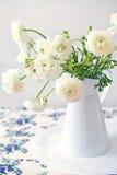 Flor blanca del ranúnculo Fotos de archivo