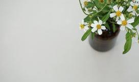 Flor blanca en la tabla con el espacio de la copia Fotos de archivo