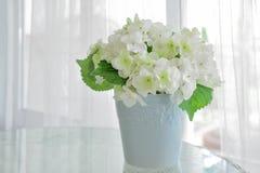 Flor blanca en pote en la tabla con alféizar en fondo Fotos de archivo