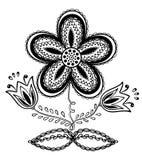 Flor blanco y negro hermosa, gráfico de la mano Imagen de archivo