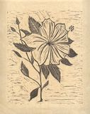 Flor - bloco xilográfico original Fotografia de Stock Royalty Free